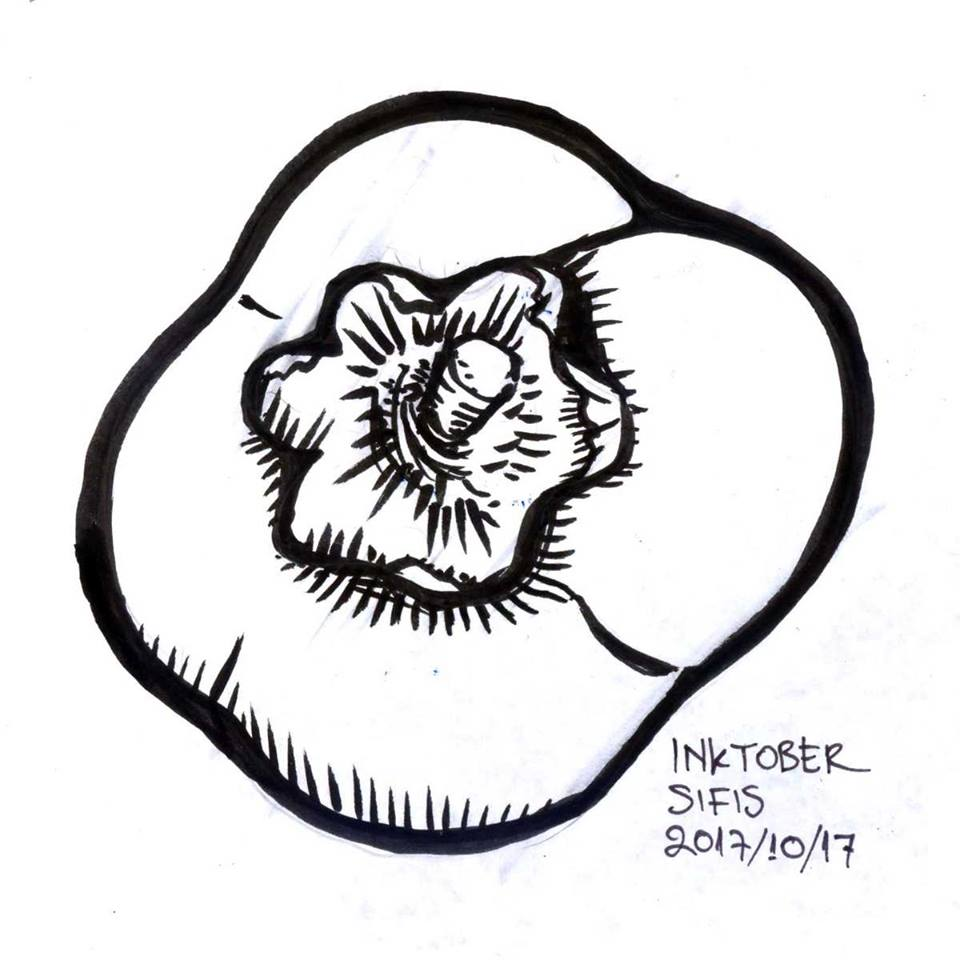 Persimmon - Marker sketch