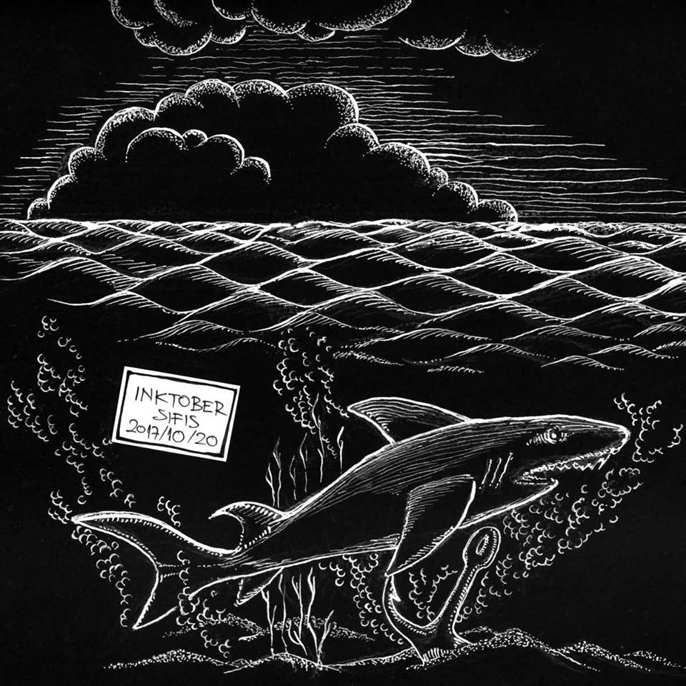 Shark - Pen and Ink